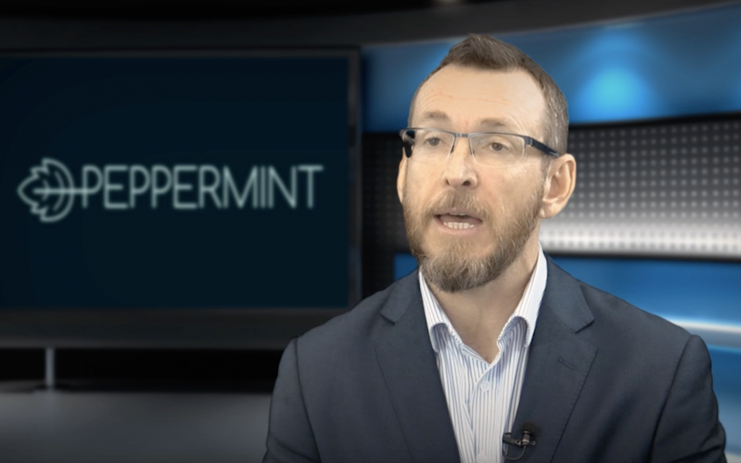 Who is Peppermint Innovation – Chris Kain, Managing Director and CEO